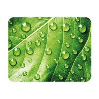 Sous-mains et tapis à souris – feuille vertes avec gouttes d'eau